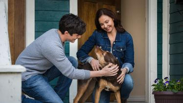 A Dog Way's Home Star Ashley Judd Dishes on Animals, Veterans, and Loving the Stranger